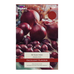 Taylors Electric Onions 50 pieces