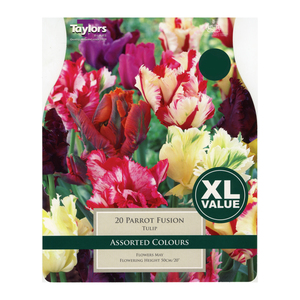 Taylors Tulip Parrot Mixture (20 Pack)