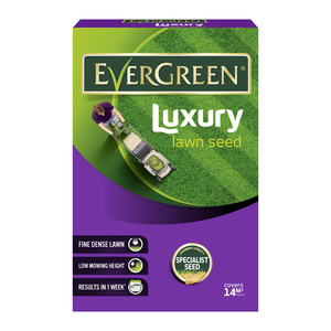 Evergreen Fine Lawn Grass Seed 420g