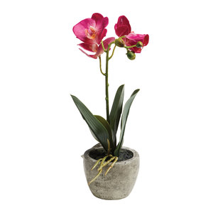 Artificial Potted Orchid 26cm