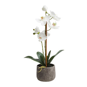 Artificial Potted Orchid 38cm