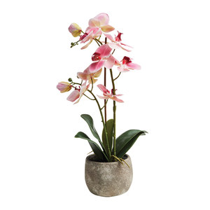Artificial Potted Orchid 45cm