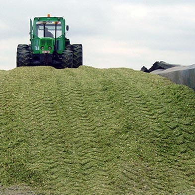 Silage Covers