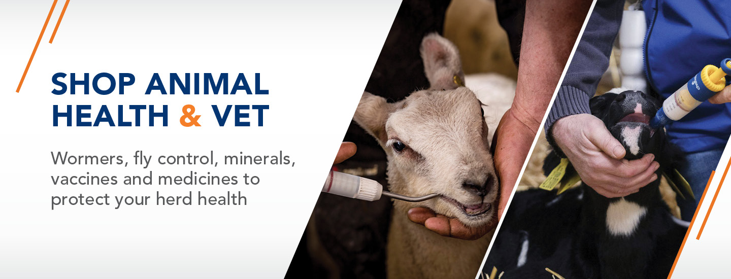AnimalHealth Banner Category Page