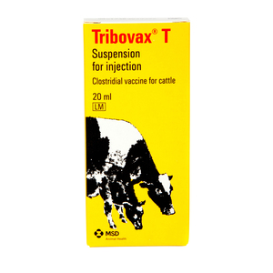 Tribovax T